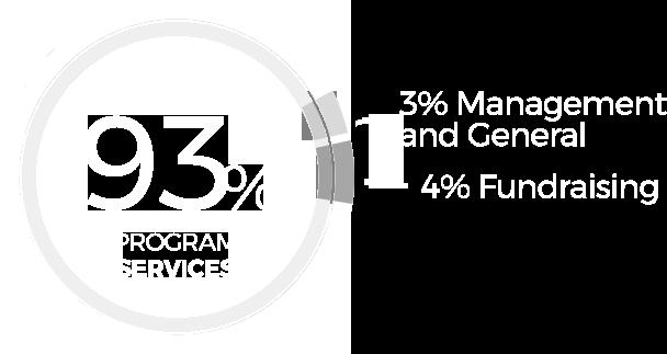 93% Program Services